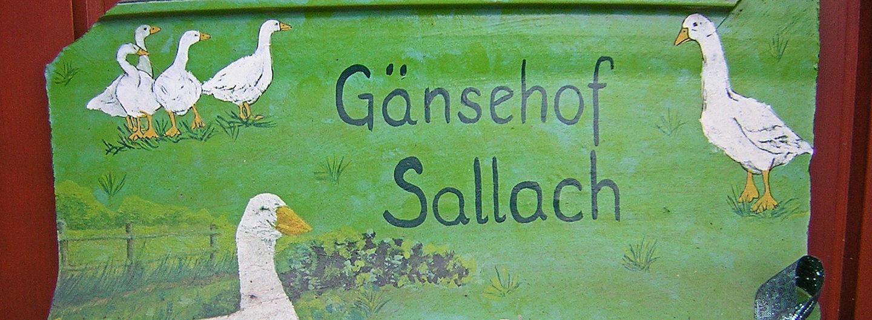 Gänsehof Sallach - Partschefeld (Thüringen)